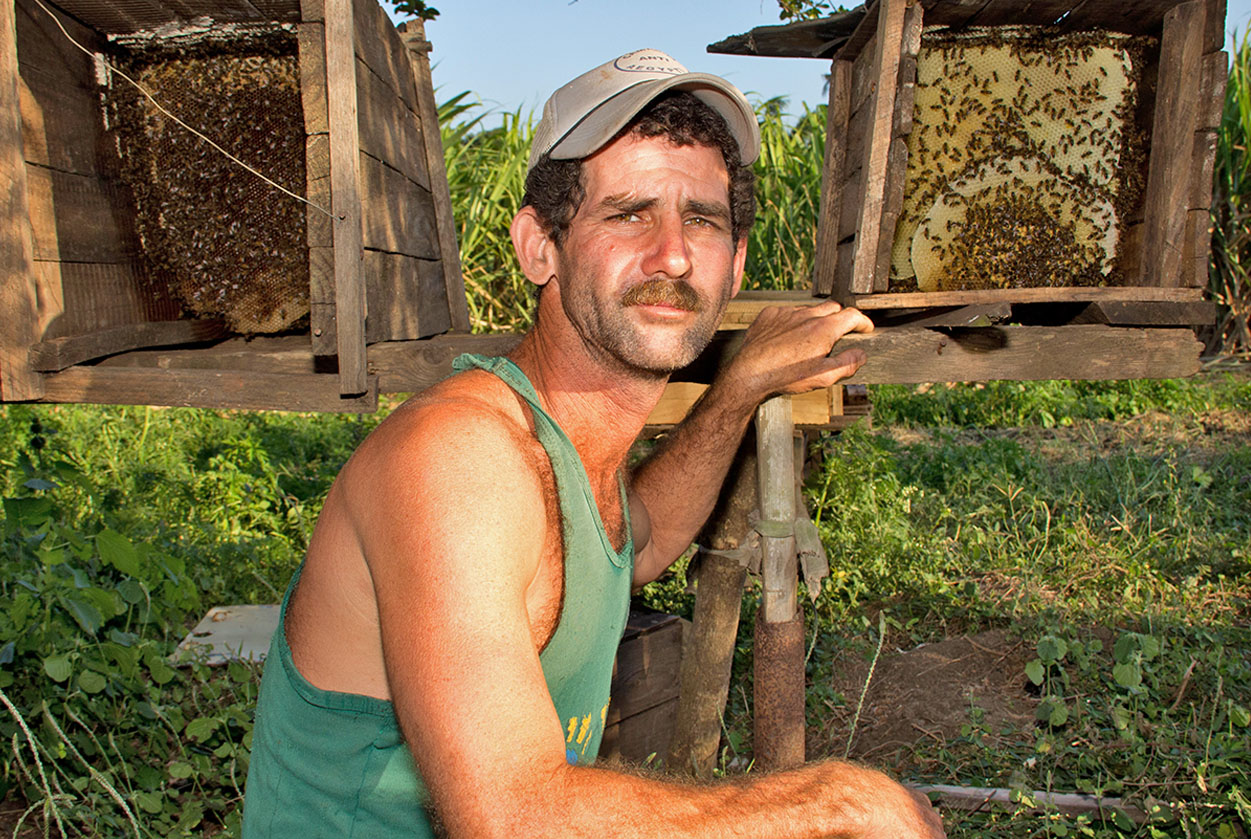 """Alcides Simales uses honey production to supplement his income as a farmer. "" Photo source: Michel Pou (USC Canada)"